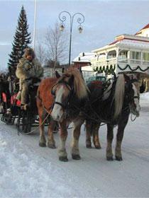 Gentle sleigh rides